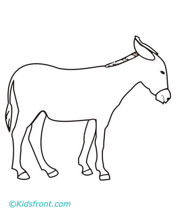 pin the tail on the donkey instructions